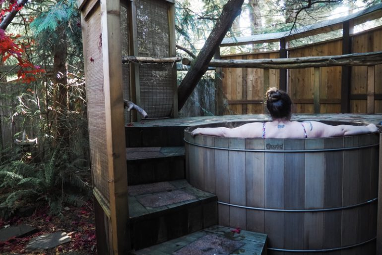 Treehouse Mt Rainier Wellspring