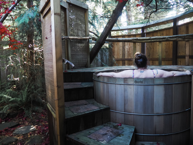 Mt Rainier spa